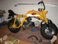 Z50A Mexican Yellow