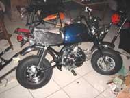 Z50 Gz DarkBlue